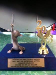 Won by Ch Sharad Solomon, 2013